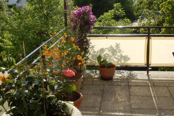 balkonsichtschutz m nchen sichtschutz und windschutz am balkon. Black Bedroom Furniture Sets. Home Design Ideas