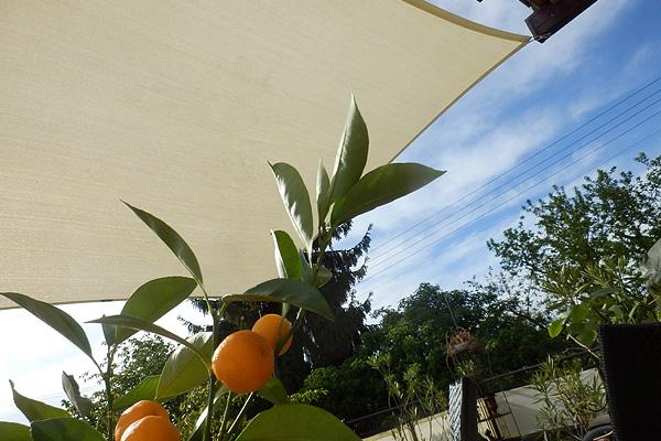 Sonnensegel für Balkon und Garten