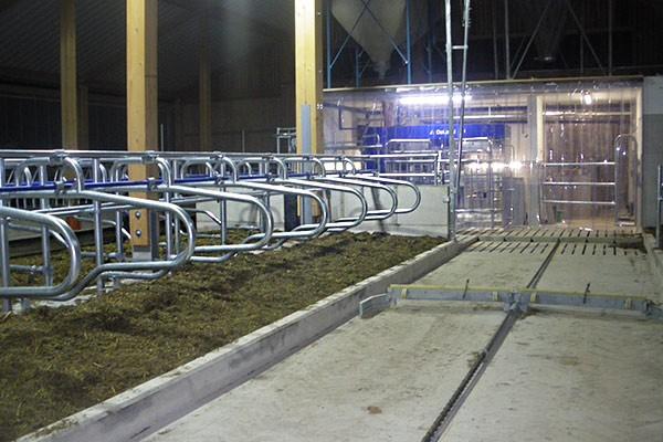 pvc-streifenvorhang-stalleinrichtung