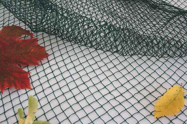 Vogelschutznetz gr n gro e abmessungen f r obstanbau for Teich schutz