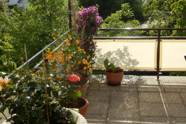 balkonsichtschutz-balkonwindschutz
