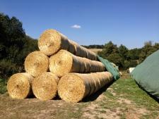 Strohballenschutz auf Rundballen